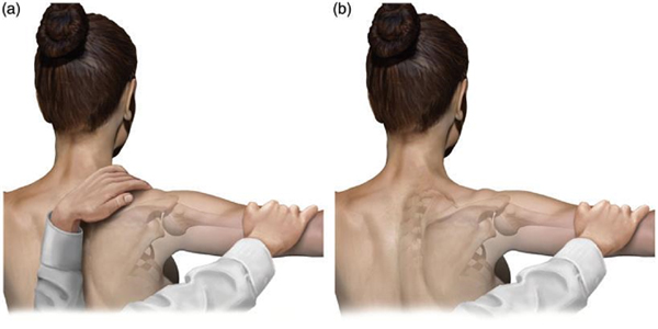 Scapula retraction test with resistance